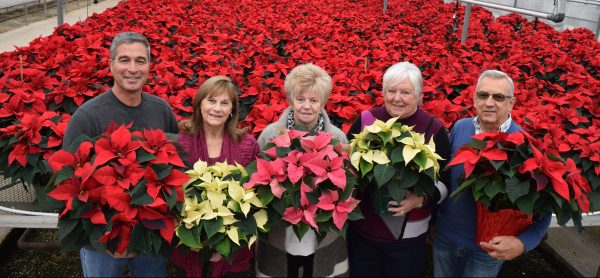 WLMH Auxiliary with poinsettias