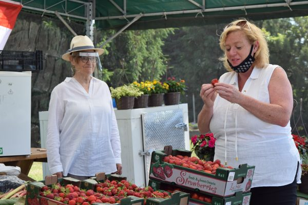 A woman watches while another eats a strawberry under a fruit stand tent.